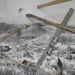 Rodrigo Valenzuela; Still Life No. 6, 2014; archival pigment print on Dibond; 43 1/2 x 43 1/2 in.